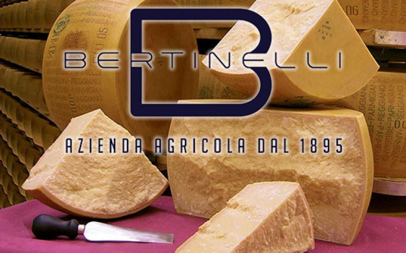 bertinelli-logo-img